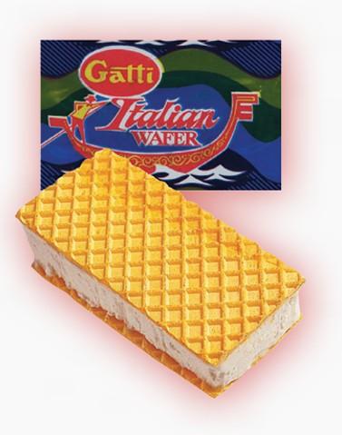 Gatti Ice Cream Manufacturers Amp Suppliers Of Dairy Ice